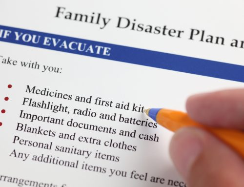 Are You Pet-pared? 5 Ways to Include Your Pet in Your Disaster Plan